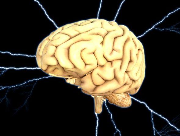 Sztuczne sieci neuronowe – część 1